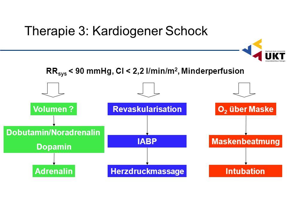 Therapie 3: Kardiogener Schock