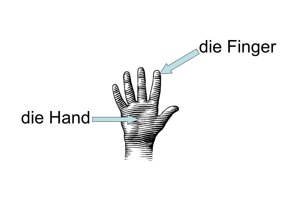 die Finger die Hand
