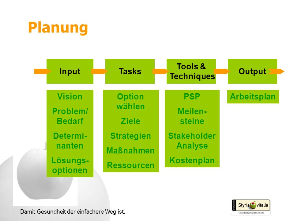 Planung Input Tasks Tools & Techniques Output Vision Problem/Bedarf