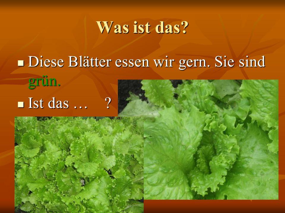 Was ist das Diese Blätter essen wir gern. Sie sind grün. Ist das …