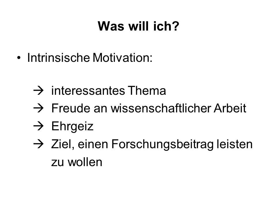 Was will ich Intrinsische Motivation: interessantes Thema
