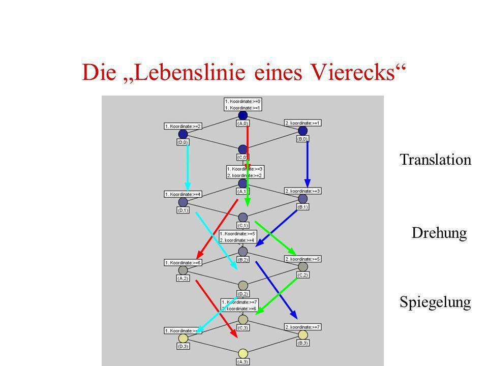 """Die """"Lebenslinie eines Vierecks"""