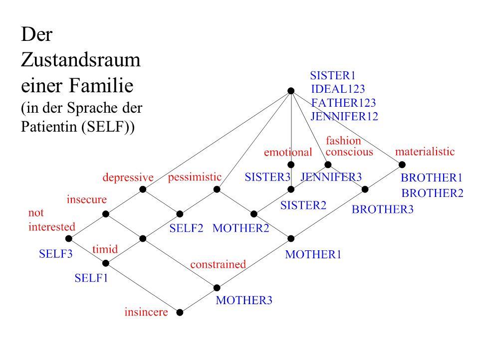 Der Zustandsraum einer Familie (in der Sprache der Patientin (SELF))