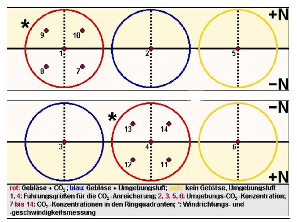 DWD- Messung: Viertel d im Ring 3