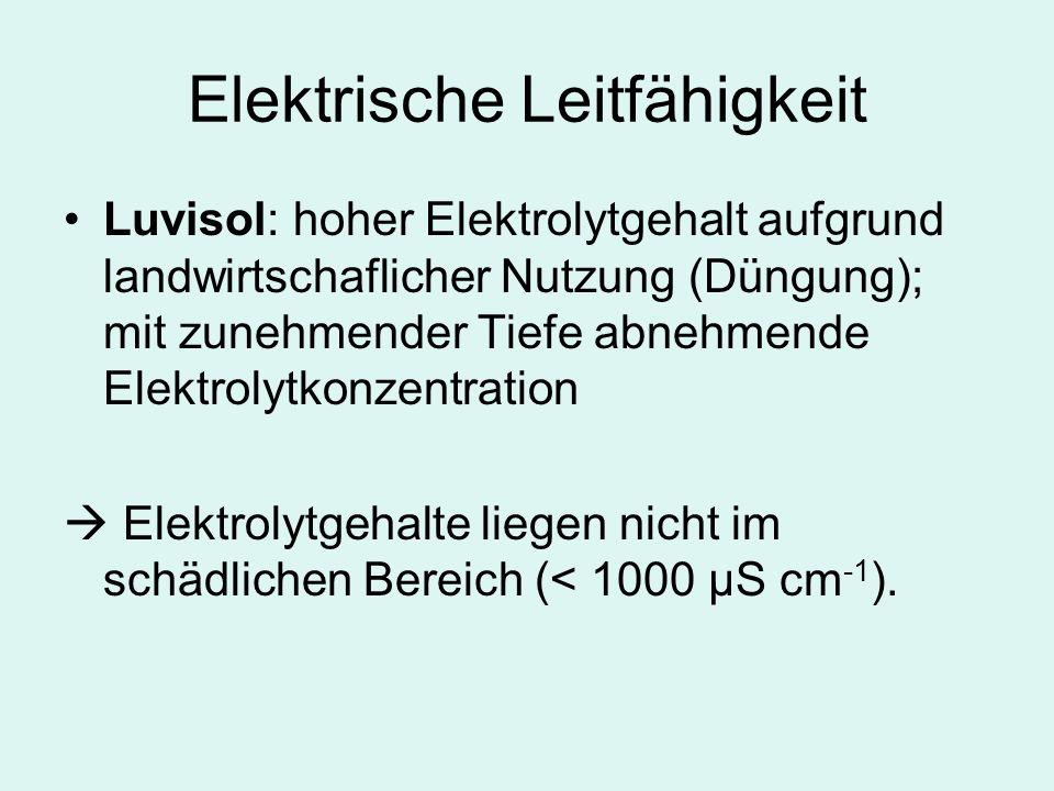 Elektrische Leitfähigkeit