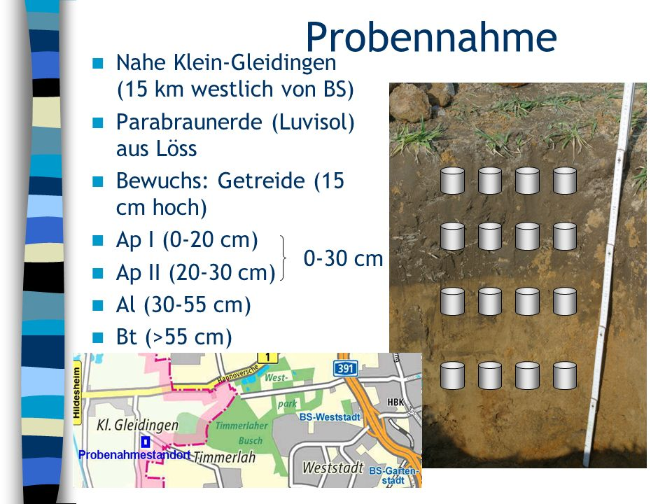 Probennahme Nahe Klein-Gleidingen (15 km westlich von BS)