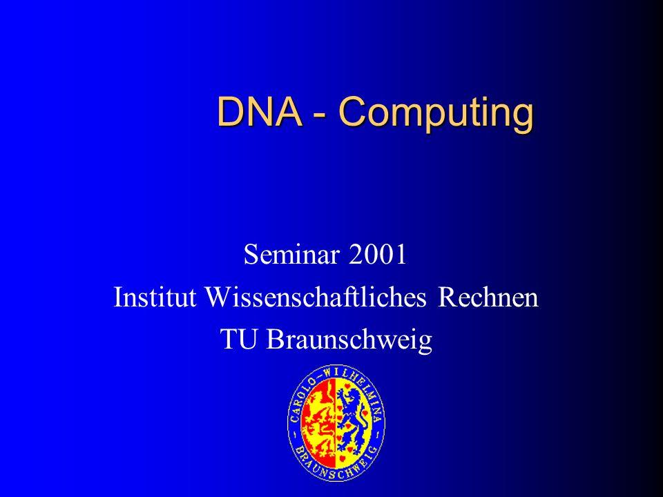 Seminar 2001 Institut Wissenschaftliches Rechnen TU Braunschweig