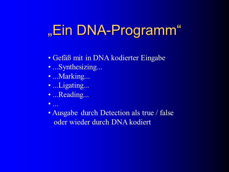 """""""Ein DNA-Programm Gefäß mit in DNA kodierter Eingabe"""