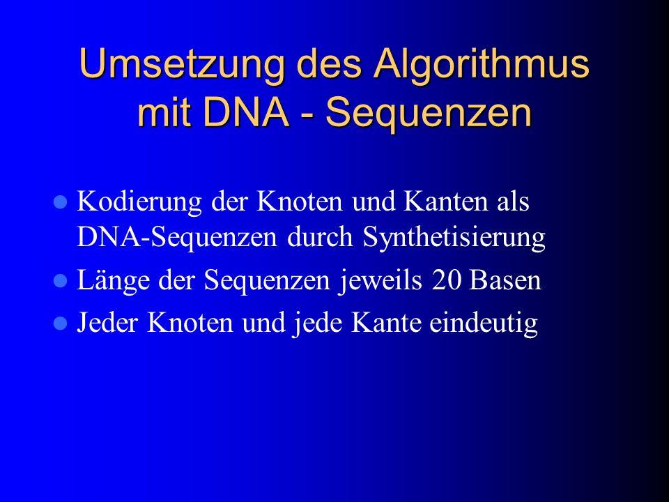 Umsetzung des Algorithmus mit DNA - Sequenzen