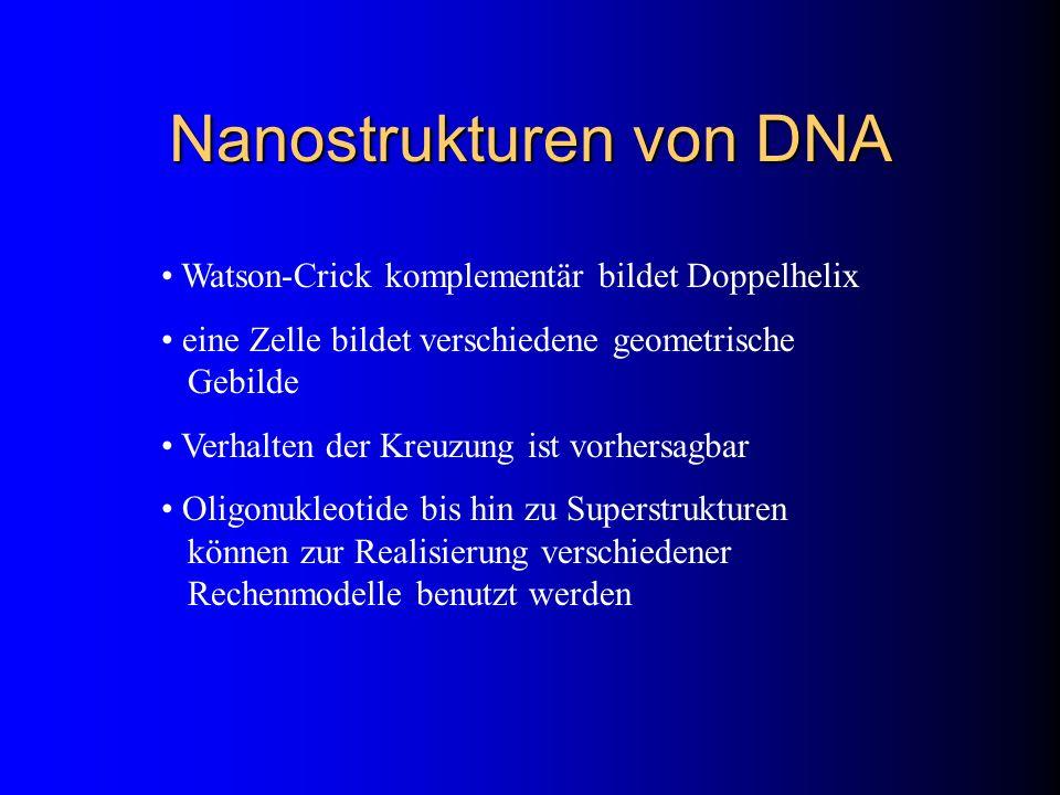 Nanostrukturen von DNA