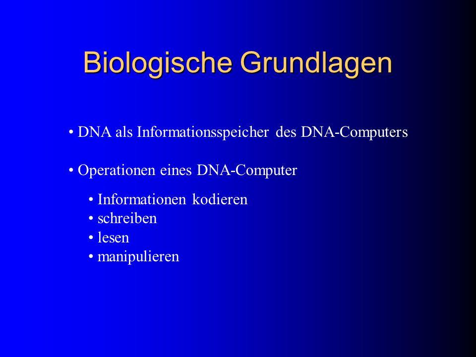 Biologische Grundlagen
