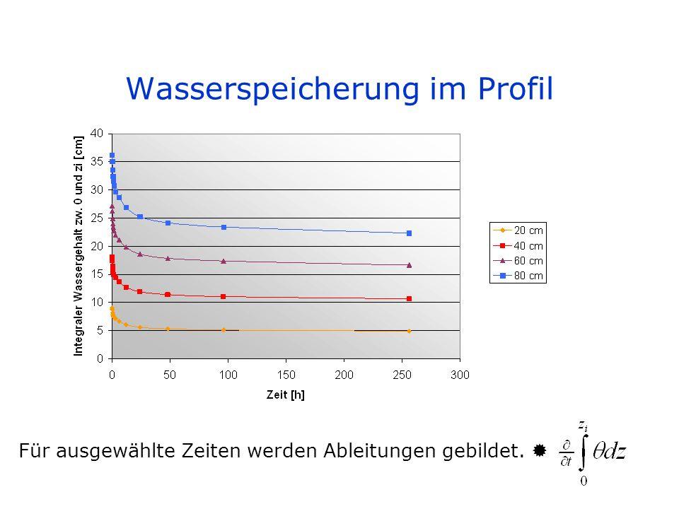 Wasserspeicherung im Profil