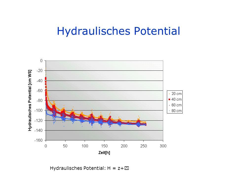 Hydraulisches Potential