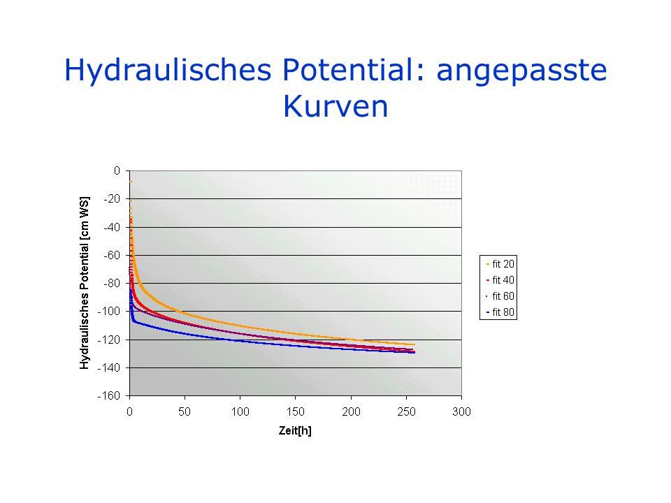 Hydraulisches Potential: angepasste Kurven