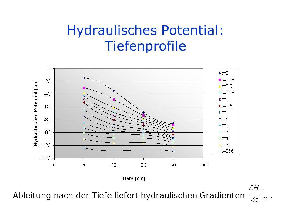 Hydraulisches Potential: Tiefenprofile