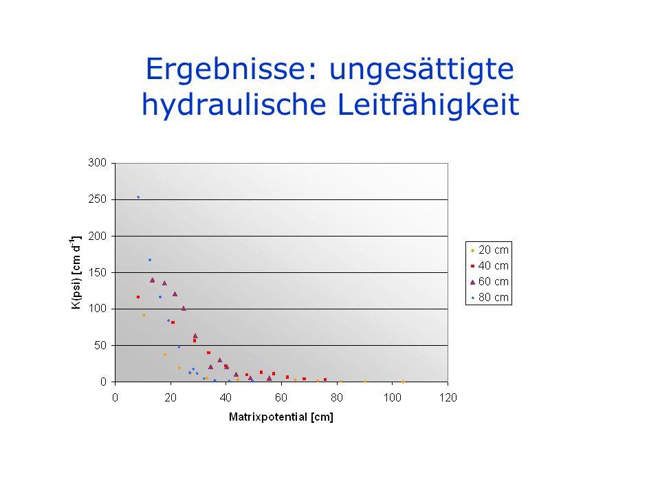 Ergebnisse: ungesättigte hydraulische Leitfähigkeit