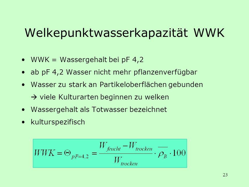 Welkepunktwasserkapazität WWK