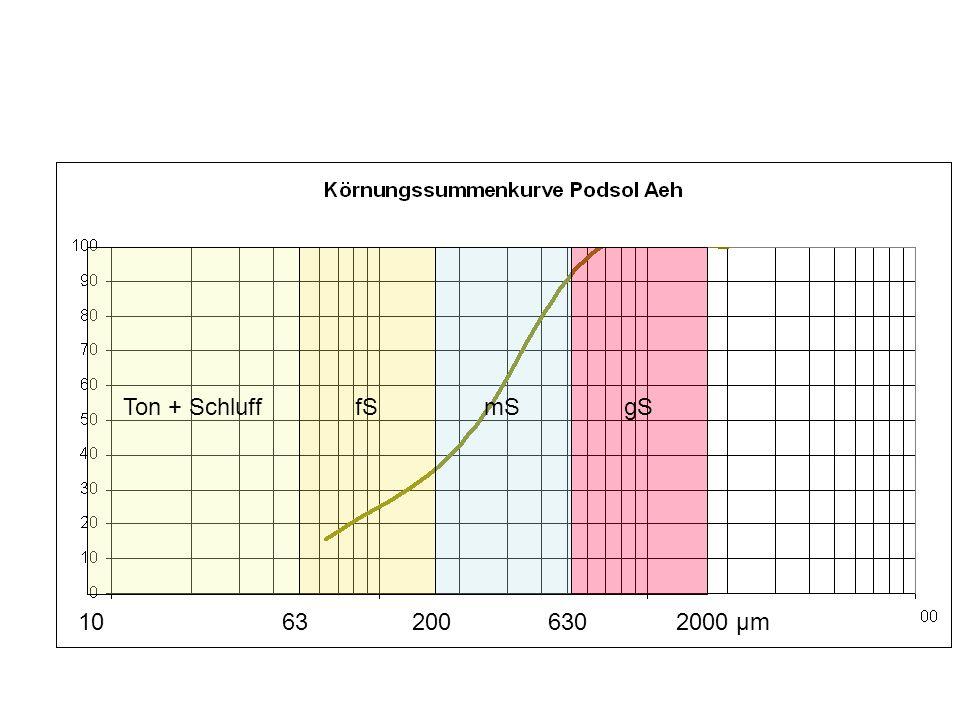10 200 63 630 2000 μm Ton + Schluff fS mS gS