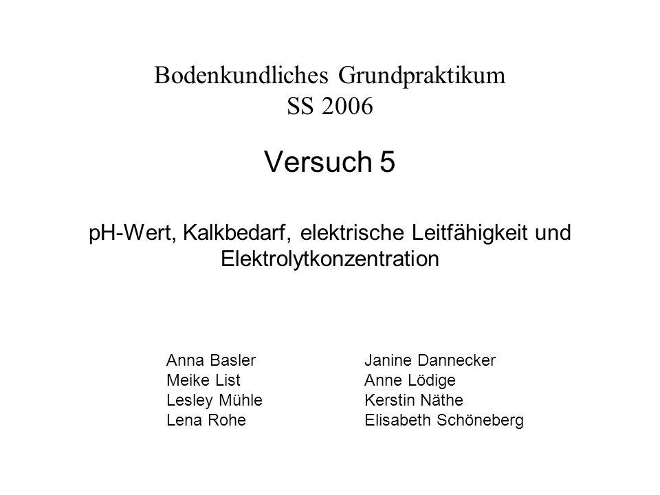 Bodenkundliches Grundpraktikum SS 2006