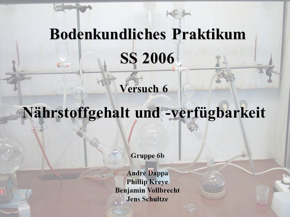 Bodenkundliches Praktikum SS 2006