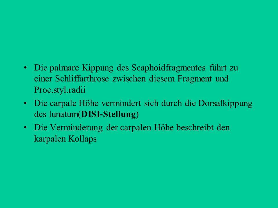 Die palmare Kippung des Scaphoidfragmentes führt zu einer Schliffarthrose zwischen diesem Fragment und Proc.styl.radii