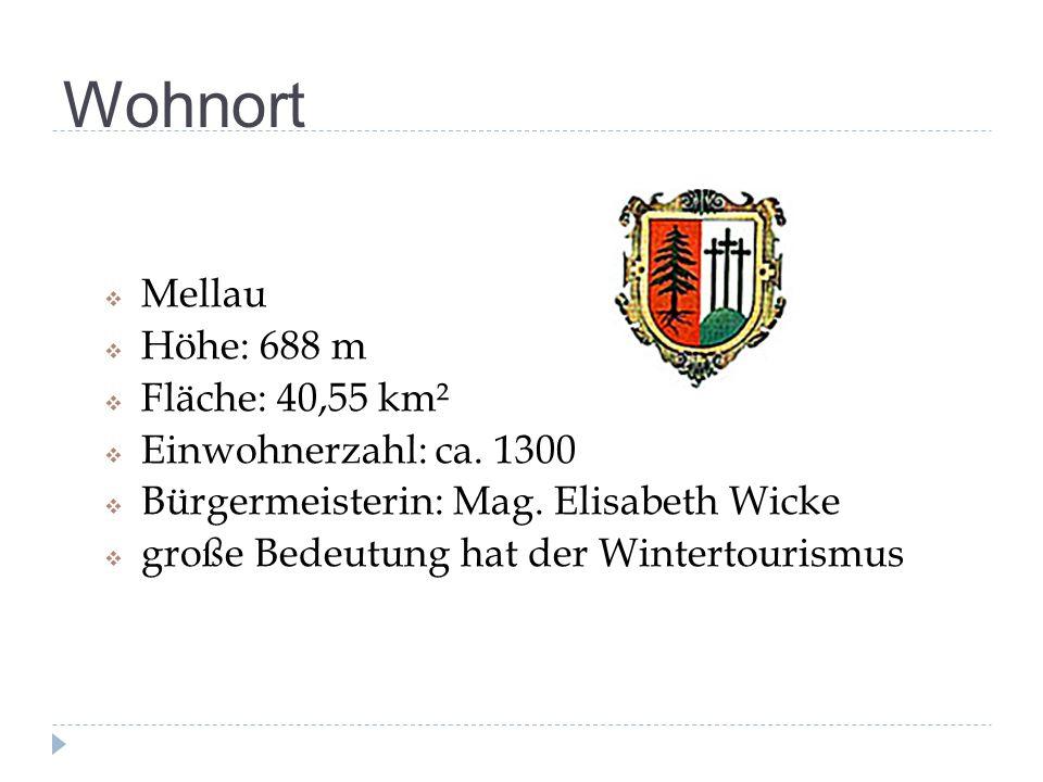 Wohnort Mellau Höhe: 688 m Fläche: 40,55 km² Einwohnerzahl: ca. 1300