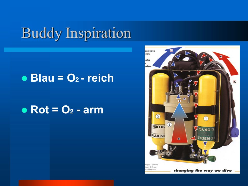 Buddy Inspiration Blau = O2 - reich Rot = O2 - arm