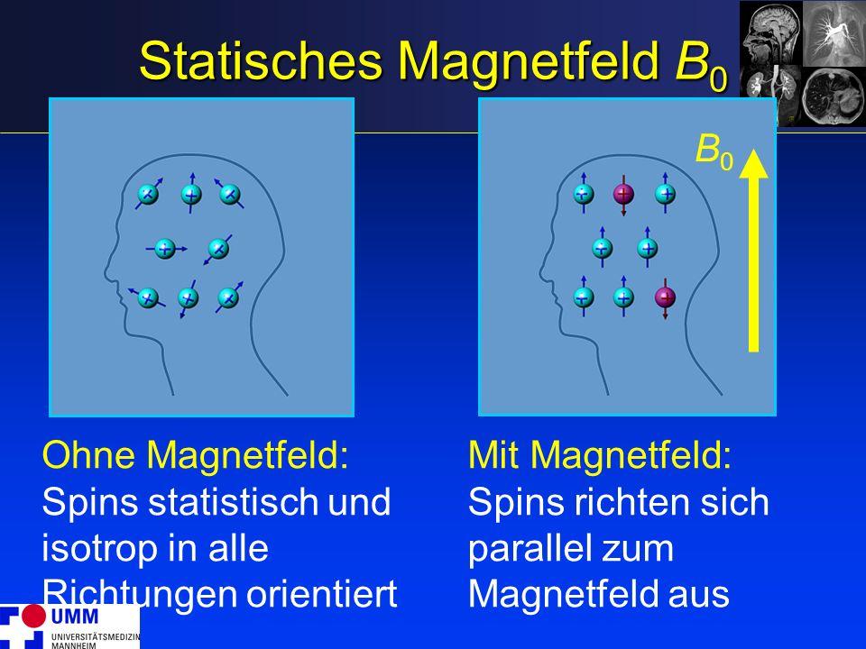 Statisches Magnetfeld B0