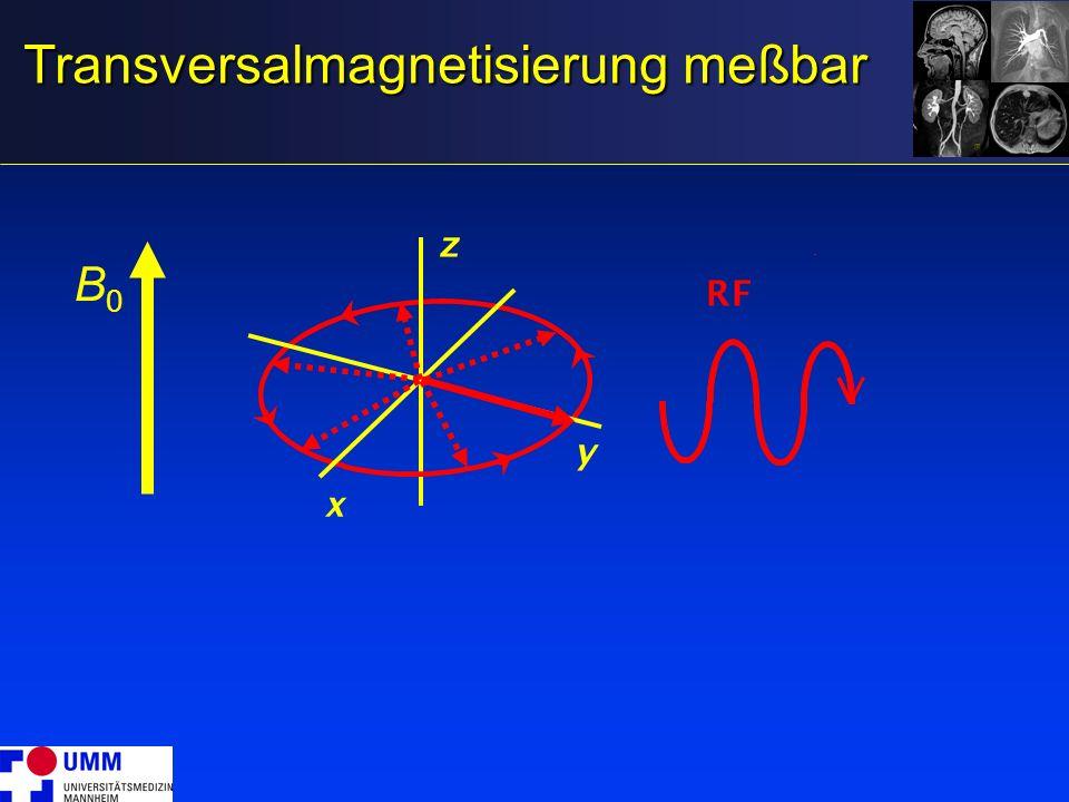 Transversalmagnetisierung meßbar