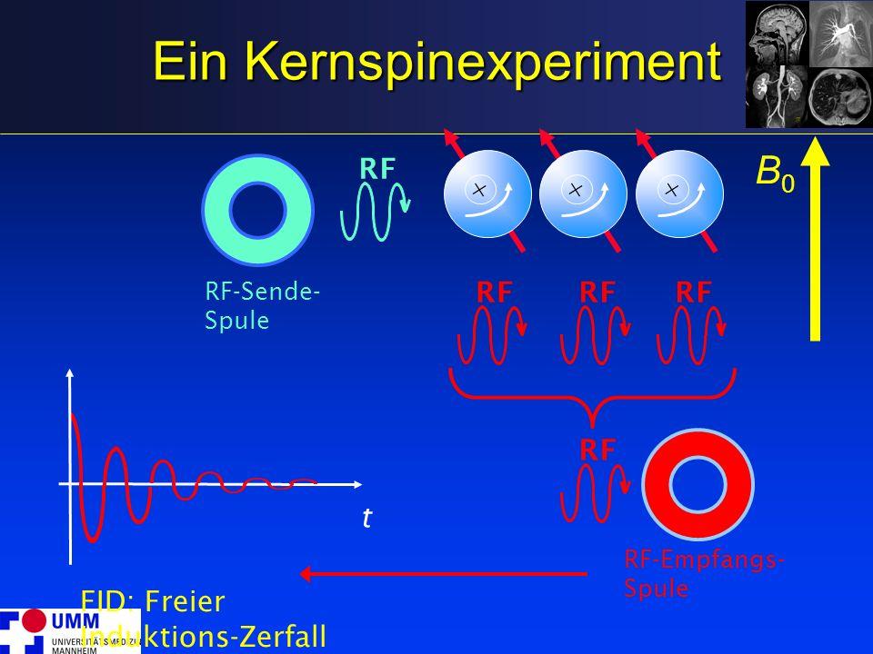 Ein Kernspinexperiment