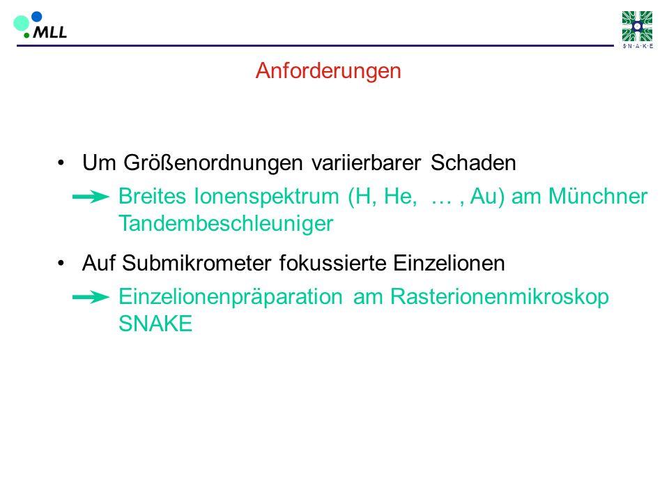 AnforderungenUm Größenordnungen variierbarer Schaden. Breites Ionenspektrum (H, He, … , Au) am Münchner Tandembeschleuniger.