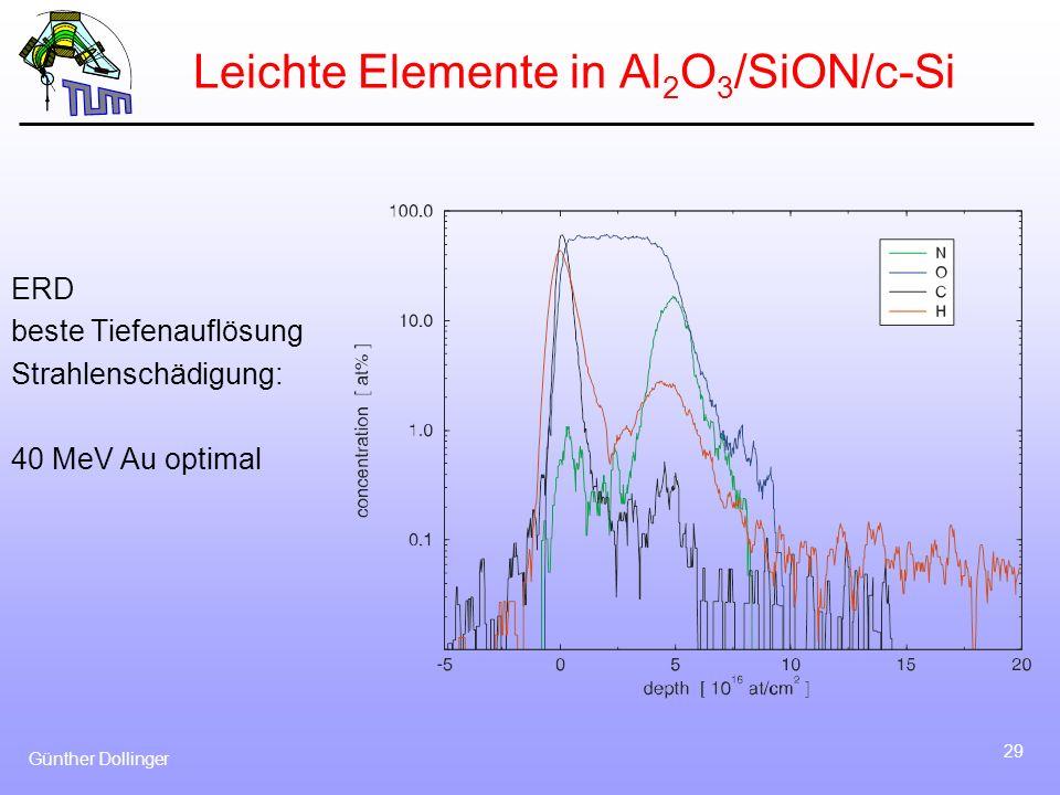 Leichte Elemente in Al2O3/SiON/c-Si