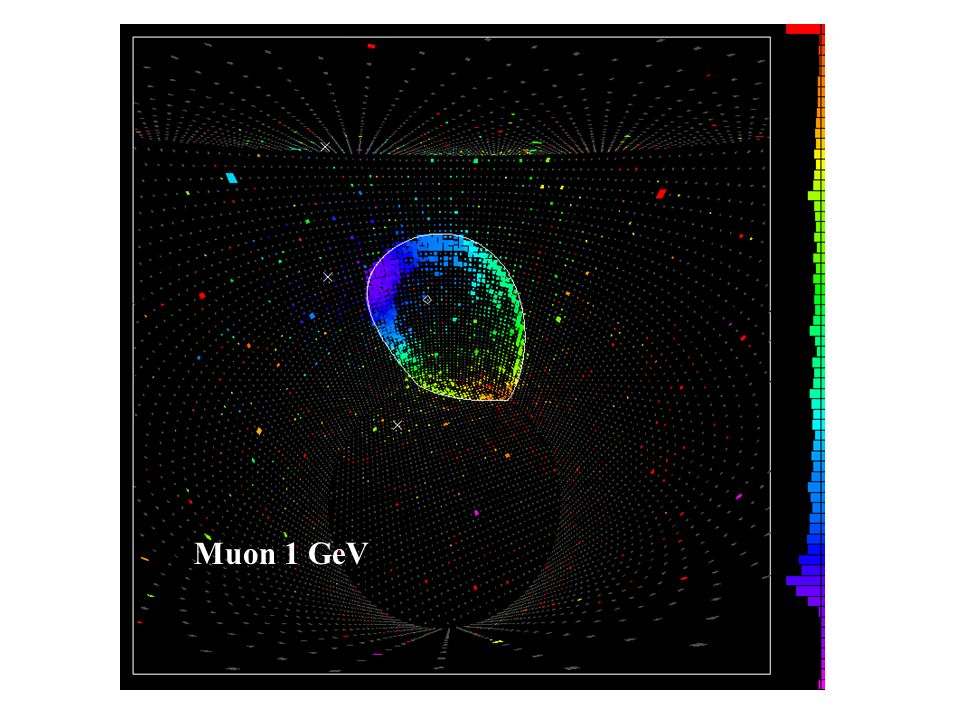 Muon 1 GeV