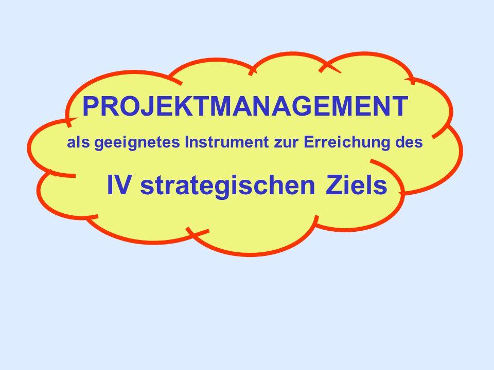 als geeignetes Instrument zur Erreichung des IV strategischen Ziels