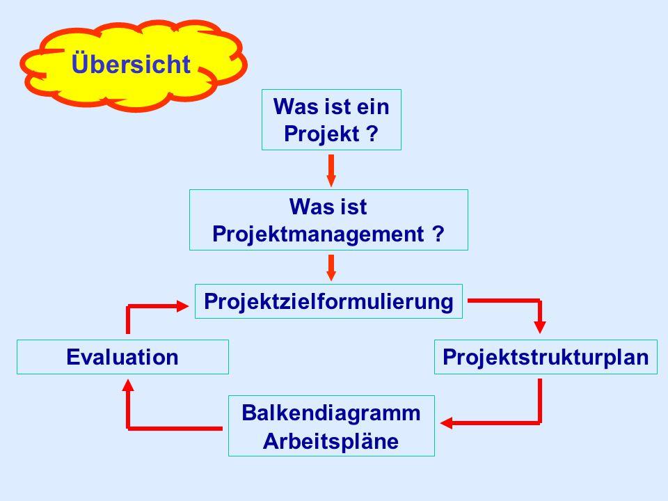Was ist Projektmanagement Projektzielformulierung