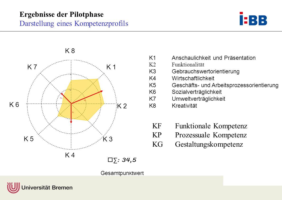 Ergebnisse der Pilotphase Darstellung eines Kompetenzprofils