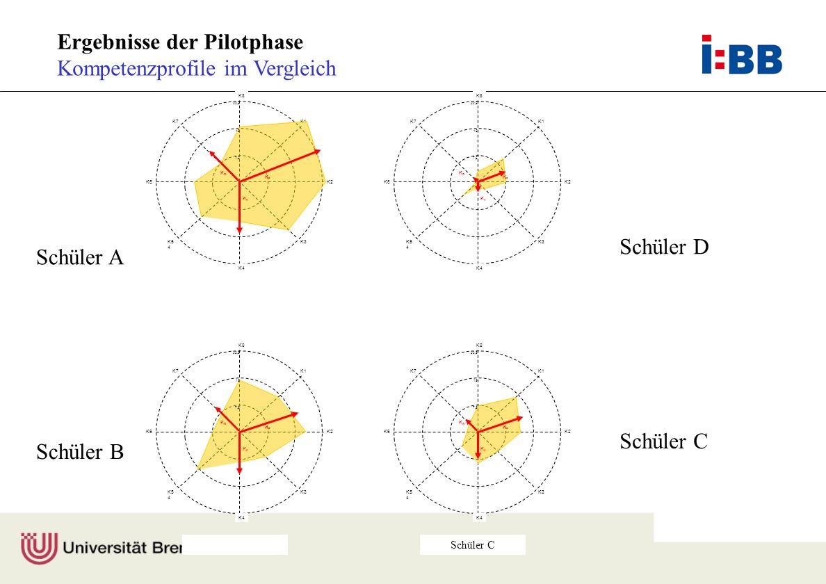 Ergebnisse der Pilotphase Kompetenzprofile im Vergleich