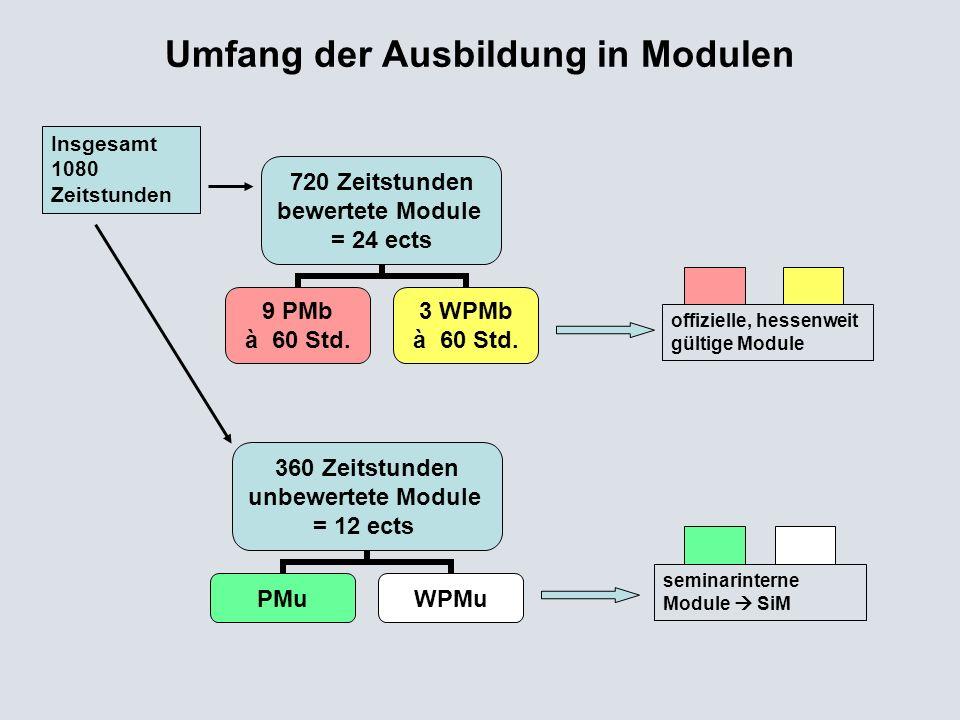 Umfang der Ausbildung in Modulen
