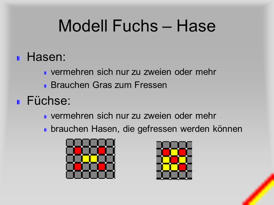 Modell Fuchs – Hase Hasen: Füchse: