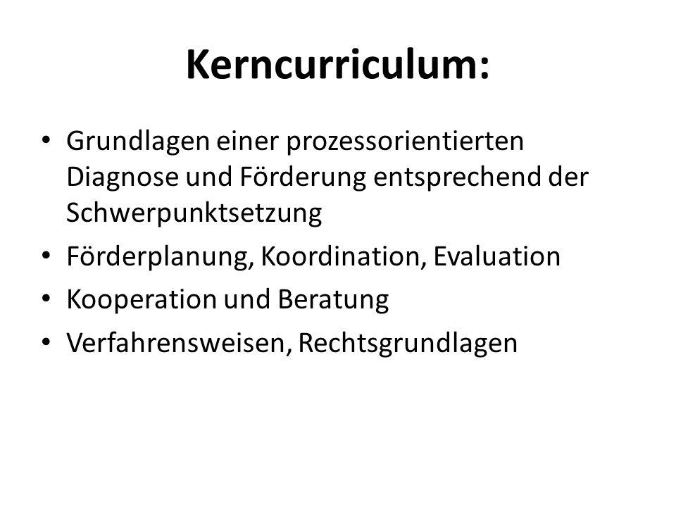 Kerncurriculum:Grundlagen einer prozessorientierten Diagnose und Förderung entsprechend der Schwerpunktsetzung.