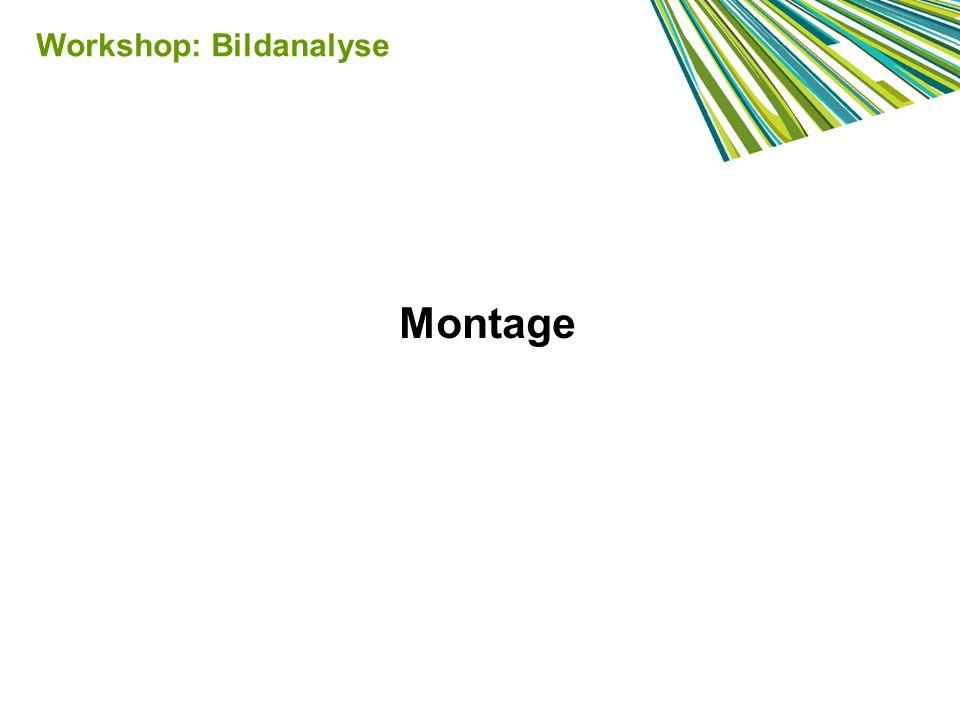 Workshop: Bildanalyse