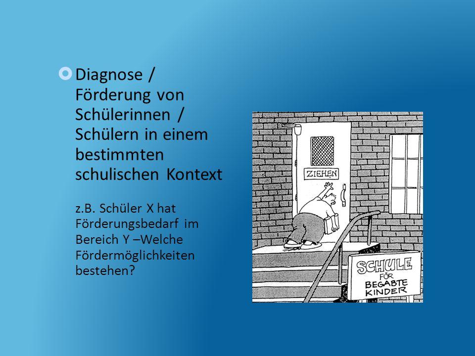 Diagnose / Förderung von Schülerinnen / Schülern in einem bestimmten schulischen Kontext z.B.