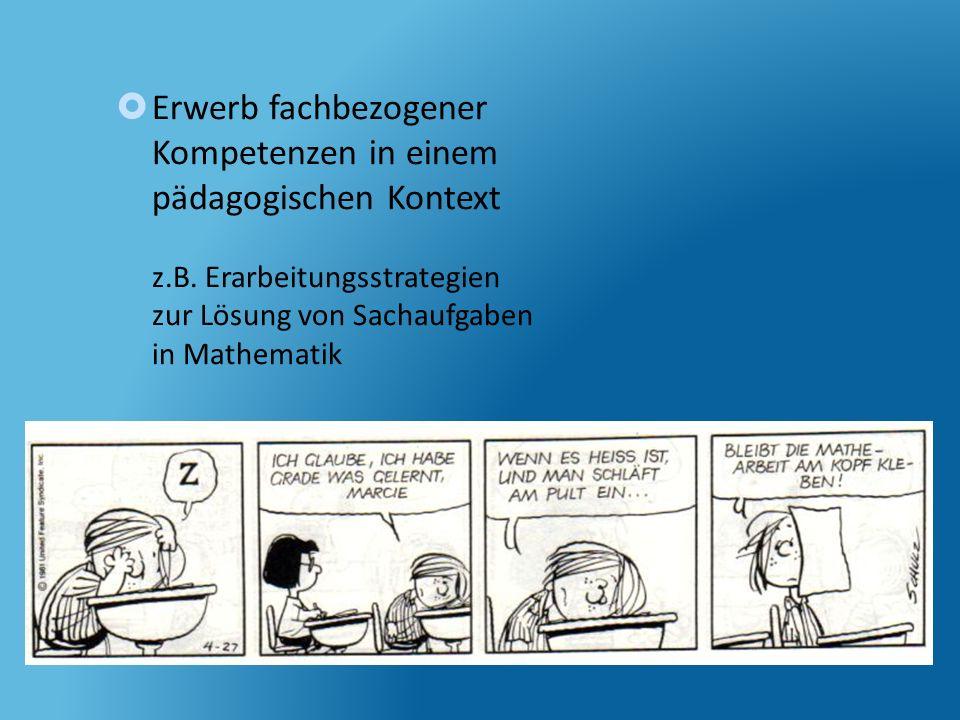 Erwerb fachbezogener Kompetenzen in einem pädagogischen Kontext z. B