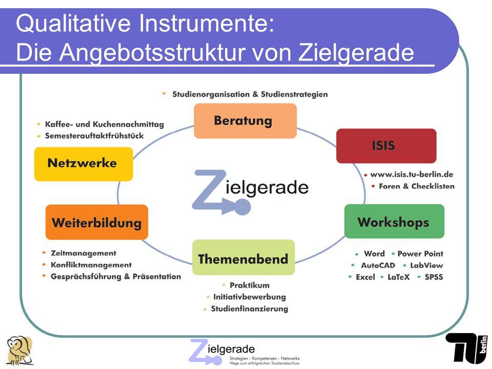 Qualitative Instrumente: Die Angebotsstruktur von Zielgerade