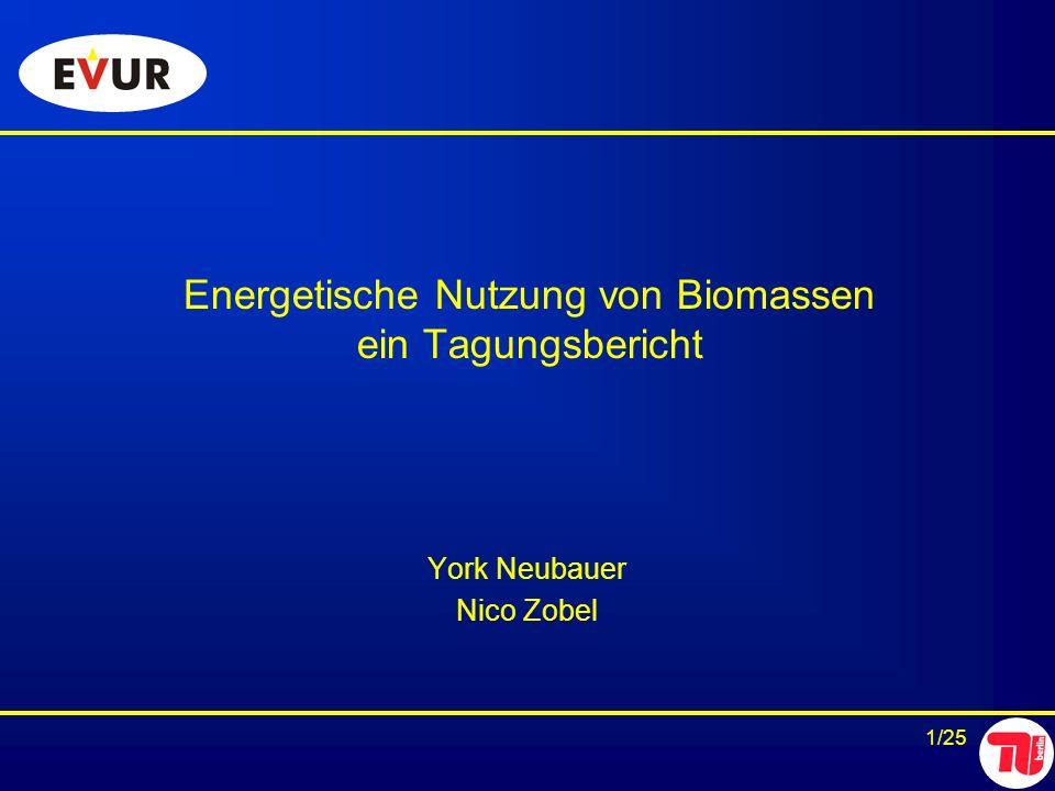 Energetische Nutzung von Biomassen ein Tagungsbericht