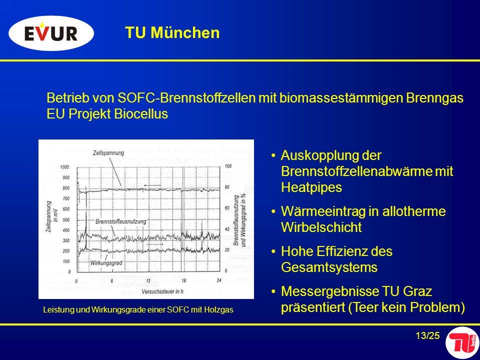 TU München Betrieb von SOFC-Brennstoffzellen mit biomassestämmigen Brenngas. EU Projekt Biocellus.