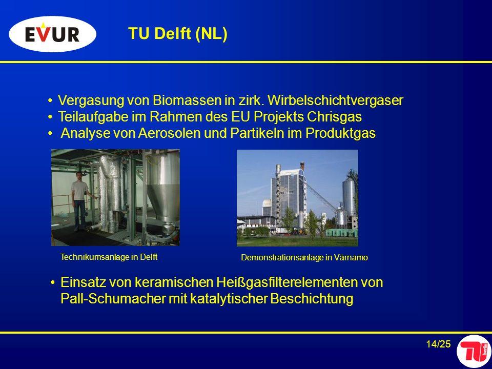 TU Delft (NL) Vergasung von Biomassen in zirk. Wirbelschichtvergaser