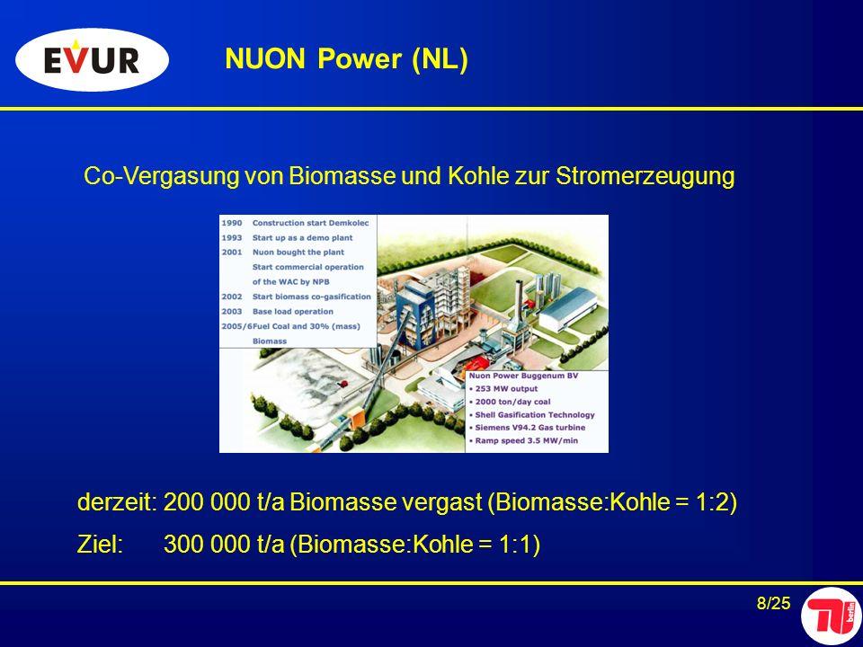 NUON Power (NL) Co-Vergasung von Biomasse und Kohle zur Stromerzeugung