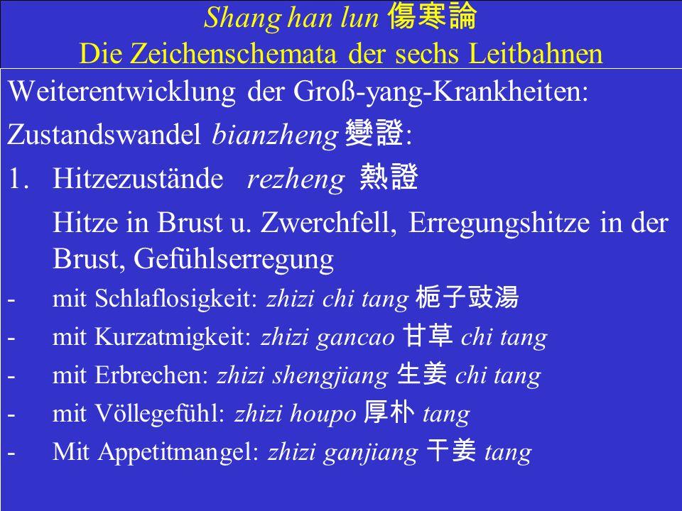 Shang han lun 傷寒論 Die Zeichenschemata der sechs Leitbahnen