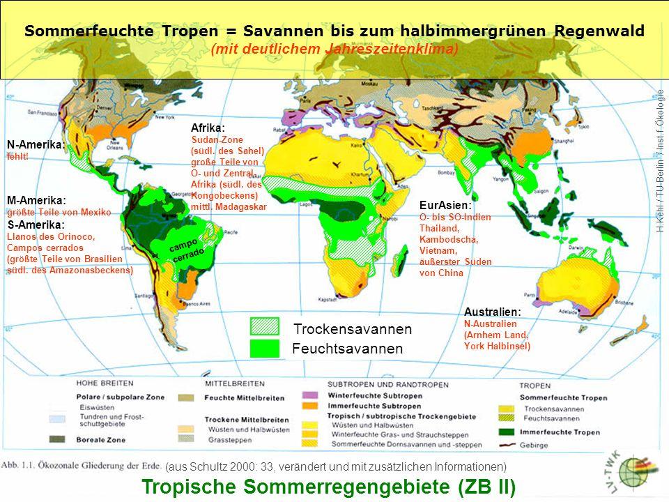 Tropische Sommerregengebiete (ZB II)